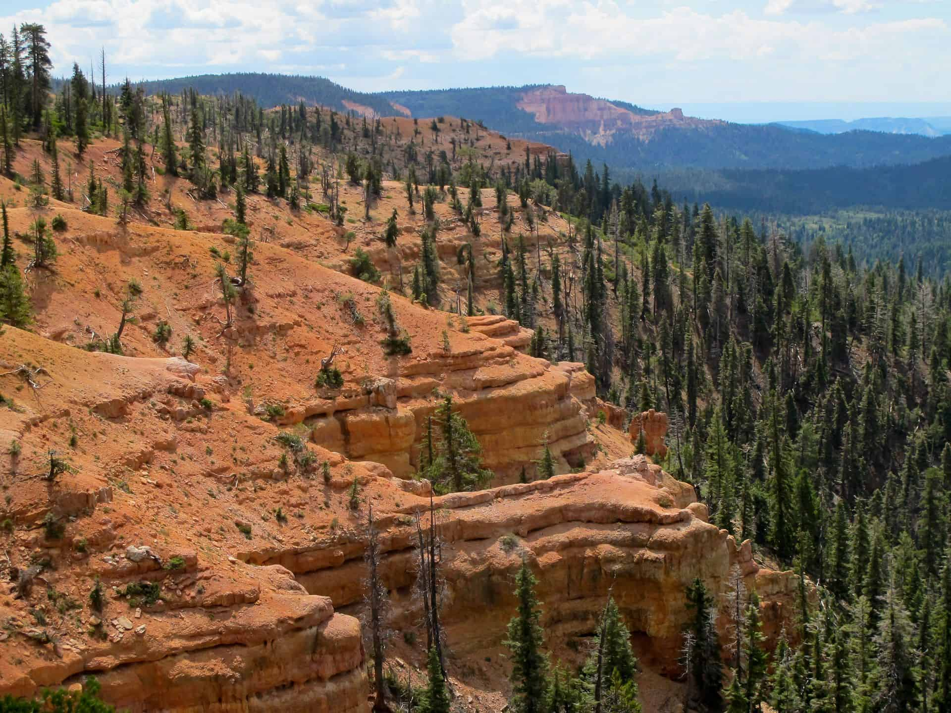 Dixie National Forest - Camping, Hikes, Campground ...